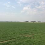 570 has 90 % agrícolas, sin mejoras edilicias.