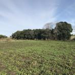 Campo de 4,5 has. a 2km de autopista y ruta 191